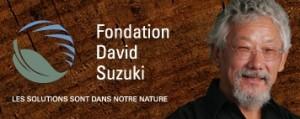 Logo Fondation David Suzuki - Fermeture central nucléaire Gentilly-2