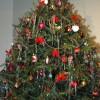 RECYC-QUÉBEC invite les citoyens à donner une deuxième vie à leur sapin de Noël