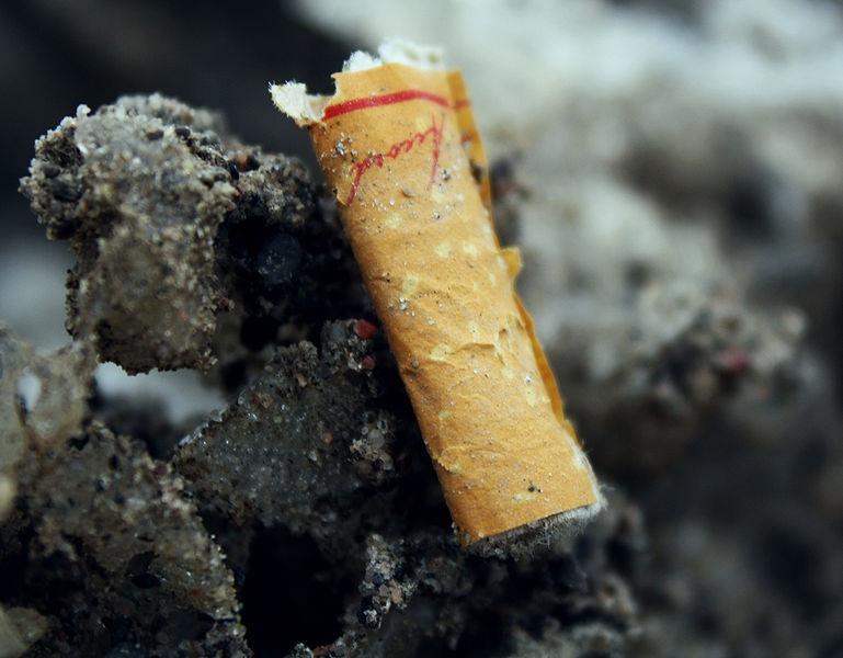 Les mégots de cigarettes du Casino de Montréal seront recyclés
