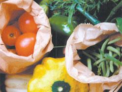 Les bonnes raisons de manger des fruits et légumes biologiques
